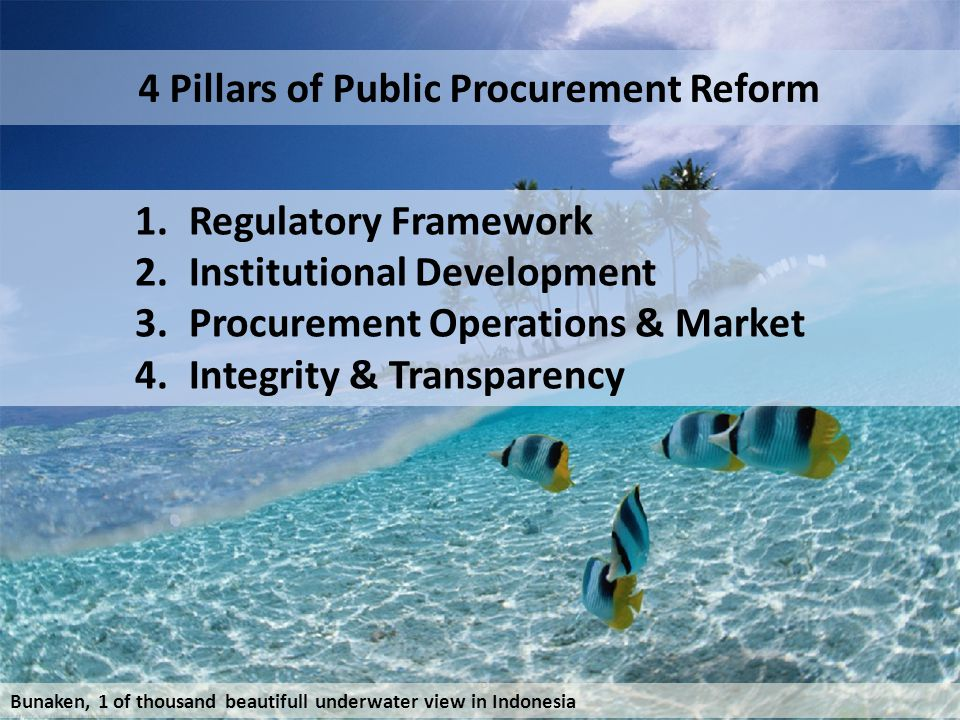 4 Pillars of Public Procurement Reform