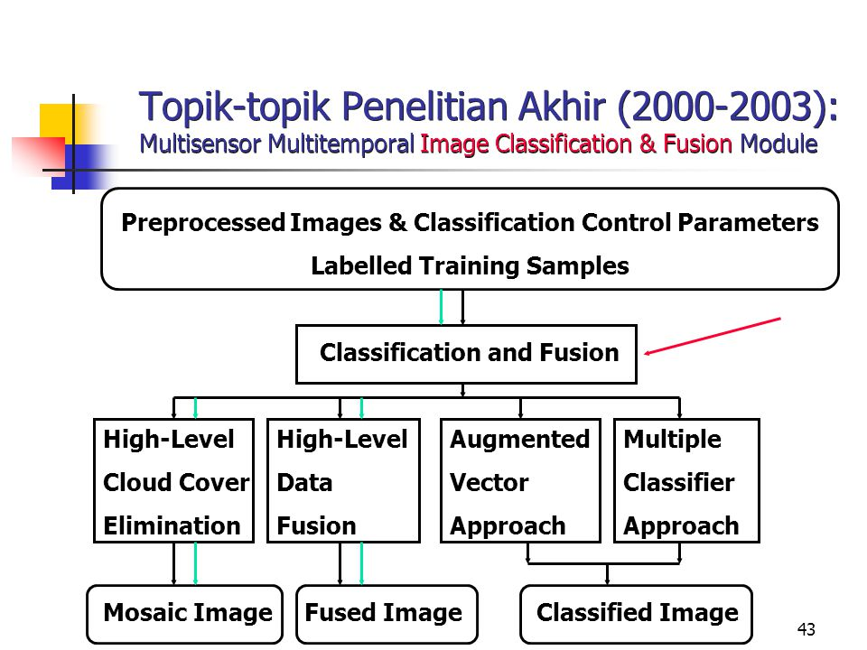 Topik-topik Penelitian Akhir (2000-2003): Multisensor Multitemporal Image Classification & Fusion Module