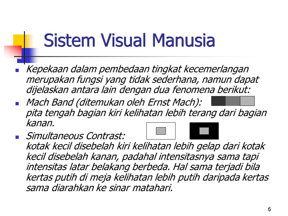 Sistem Visual Manusia