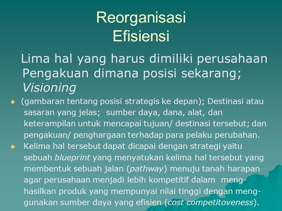 Reorganisasi Efisiensi