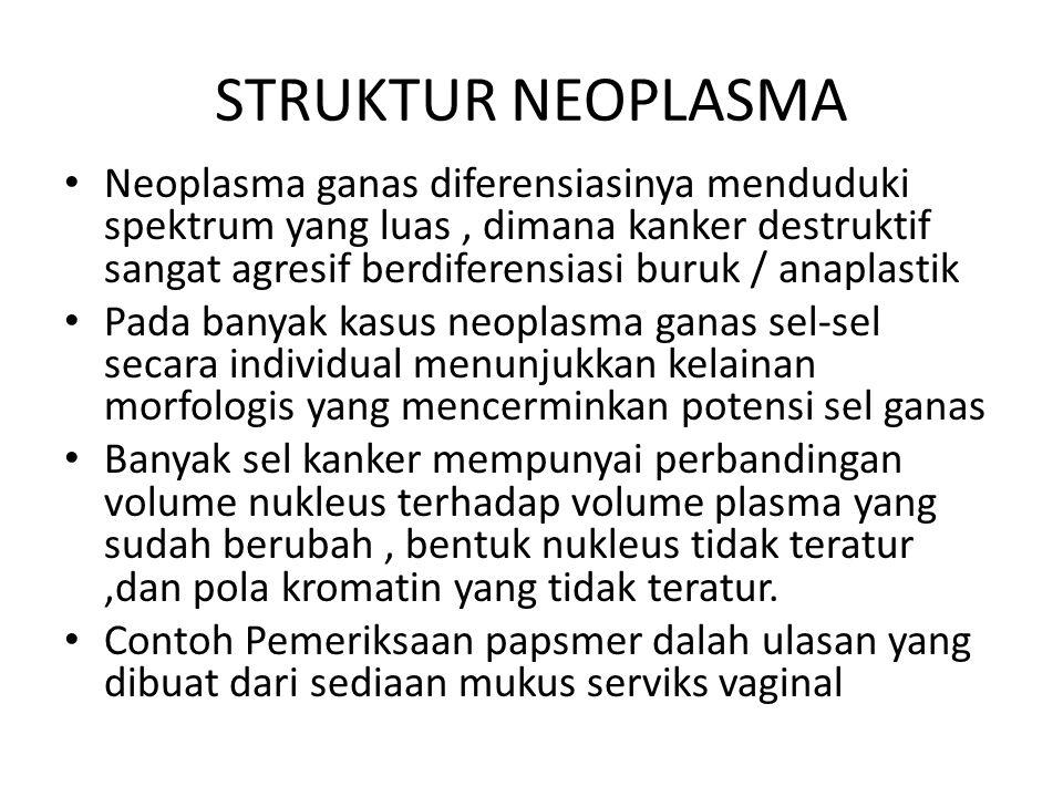 STRUKTUR NEOPLASMA