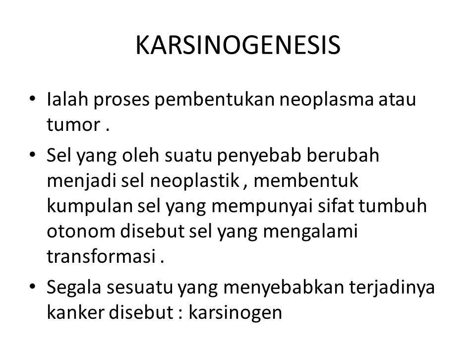KARSINOGENESIS Ialah proses pembentukan neoplasma atau tumor .