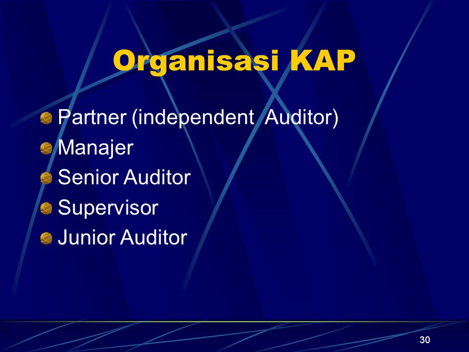 Organisasi KAP Partner (independent Auditor) Manajer Senior Auditor