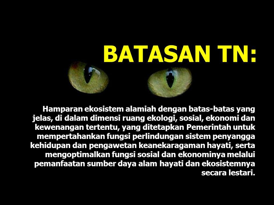 BATASAN TN: