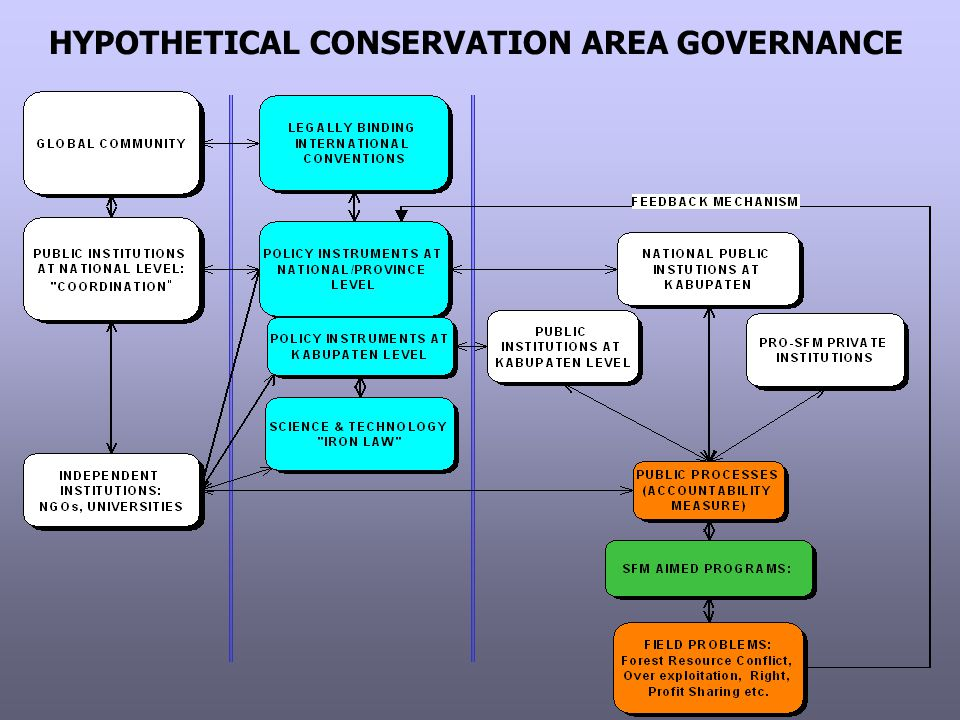 HYPOTHETICAL CONSERVATION AREA GOVERNANCE