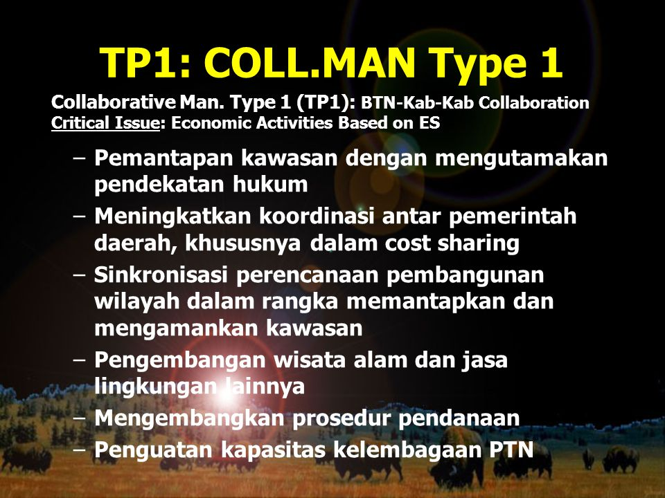 TP1: COLL.MAN Type 1 Collaborative Man. Type 1 (TP1): BTN-Kab-Kab Collaboration. Critical Issue: Economic Activities Based on ES.