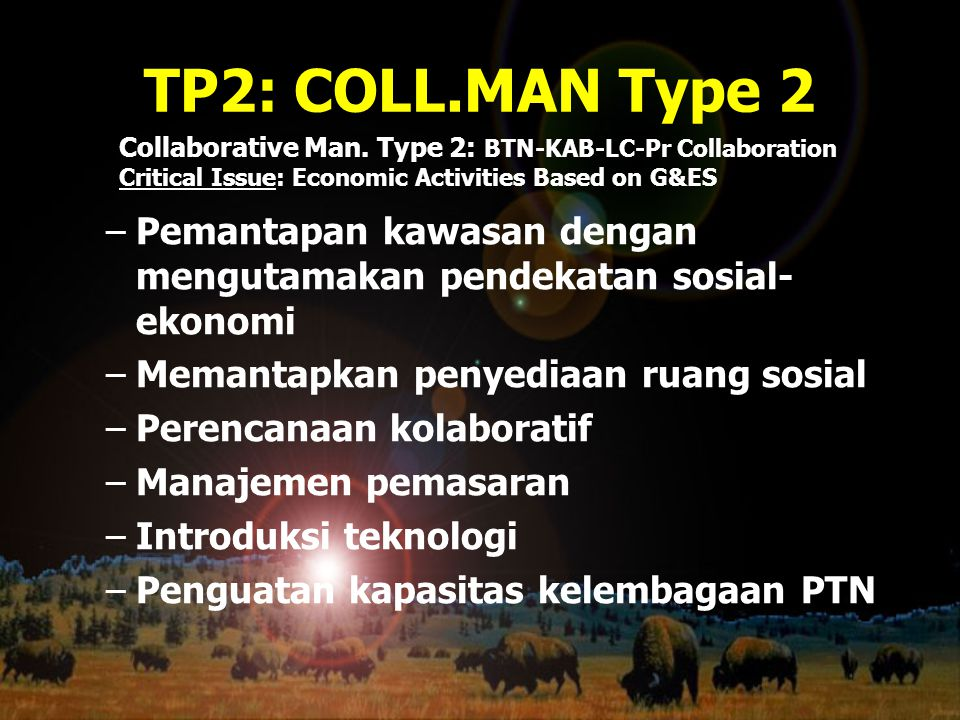 TP2: COLL.MAN Type 2 Collaborative Man. Type 2: BTN-KAB-LC-Pr Collaboration. Critical Issue: Economic Activities Based on G&ES.