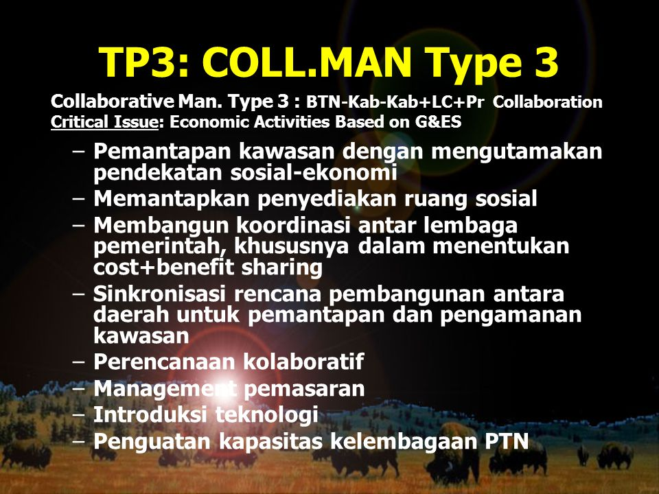 TP3: COLL.MAN Type 3 Collaborative Man. Type 3 : BTN-Kab-Kab+LC+Pr Collaboration. Critical Issue: Economic Activities Based on G&ES.