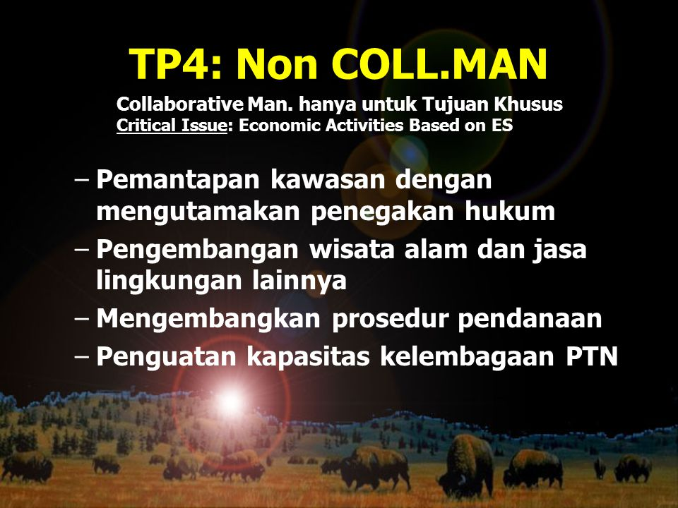TP4: Non COLL.MAN Collaborative Man. hanya untuk Tujuan Khusus. Critical Issue: Economic Activities Based on ES.