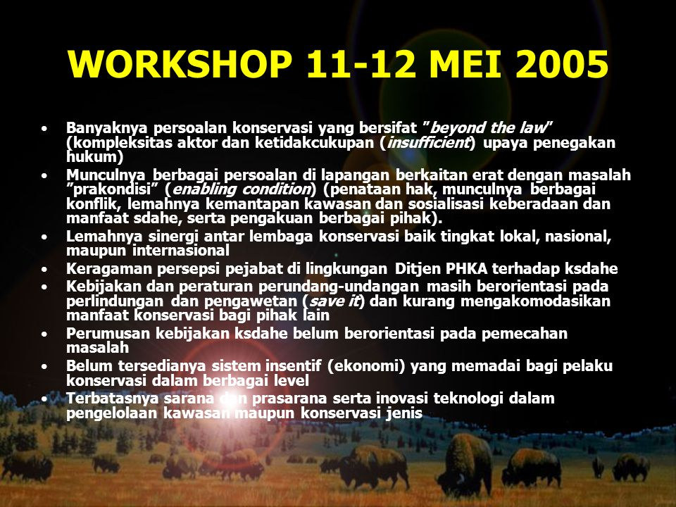 WORKSHOP 11-12 MEI 2005