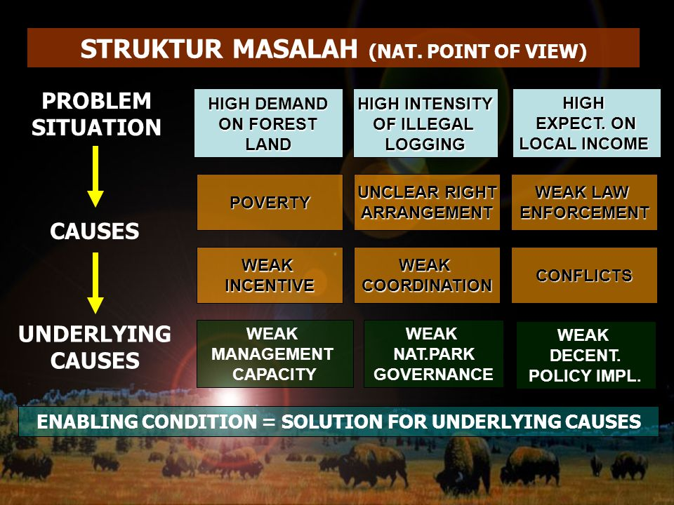 STRUKTUR MASALAH (NAT. POINT OF VIEW)
