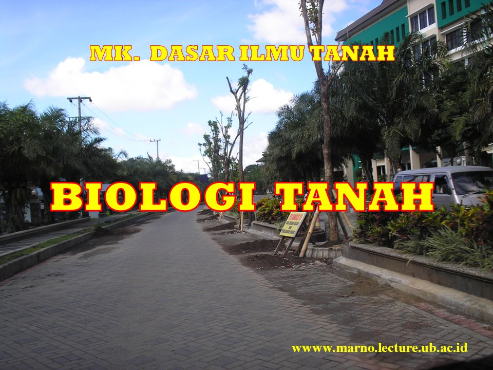 MK. DASAR ILMU TANAH BIOLOGI TANAH wwww.marno.lecture.ub.ac.id