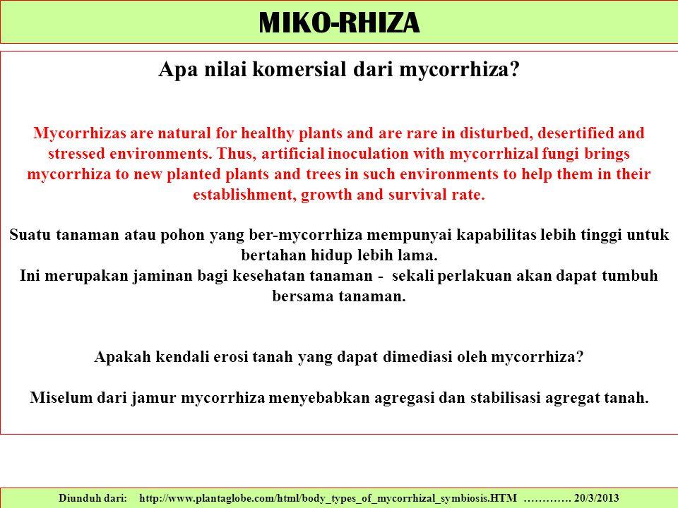 MIKO-RHIZA Apa nilai komersial dari mycorrhiza