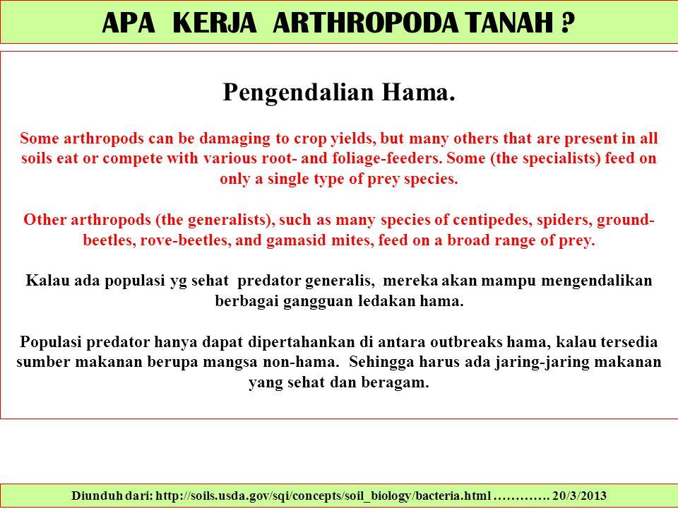 APA KERJA ARTHROPODA TANAH