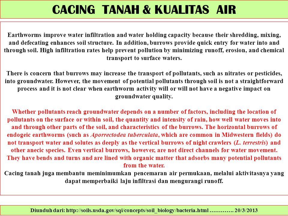 CACING TANAH & KUALITAS AIR