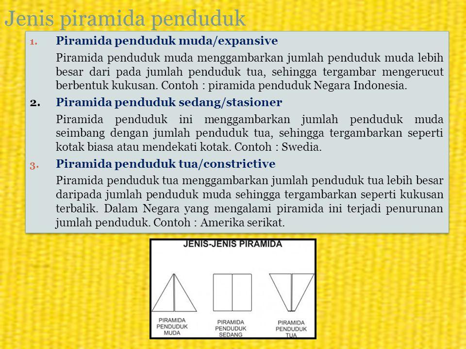 Jenis piramida penduduk