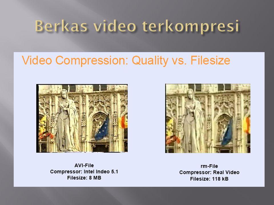 Berkas video terkompresi