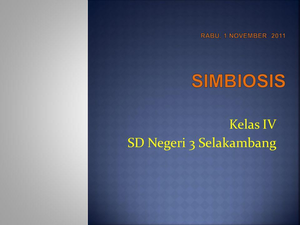 Rabu, 1 november 2011 SIMBIOSIS