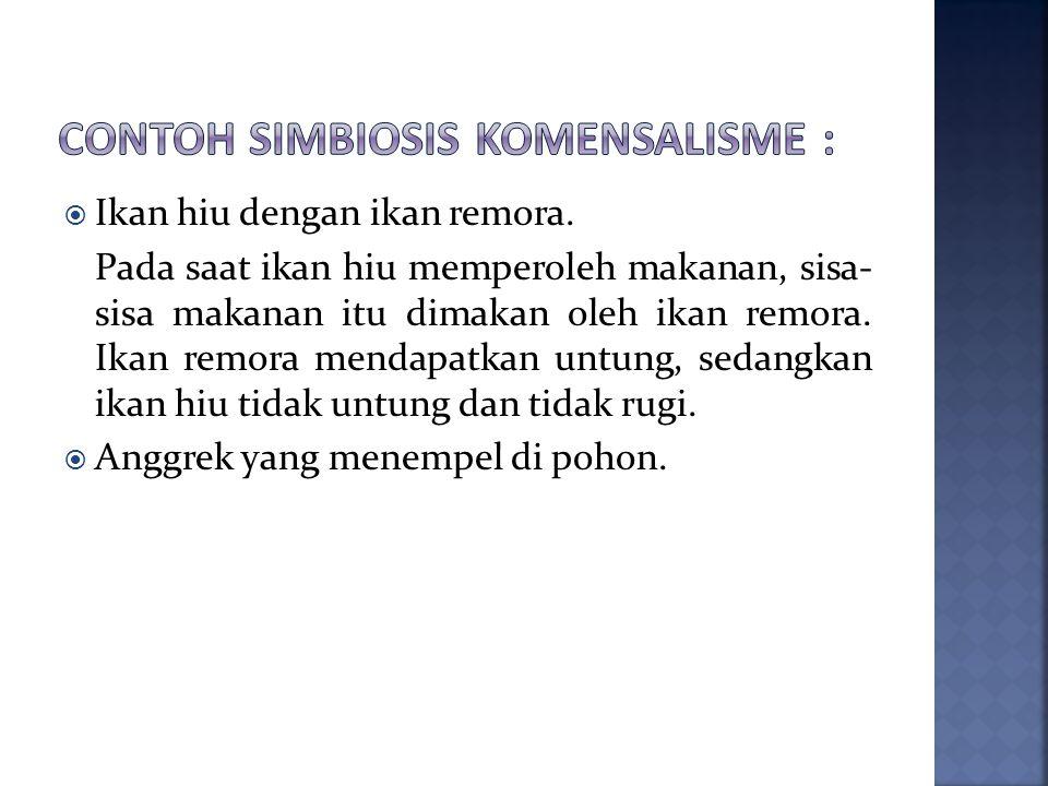 Contoh simbiosis komensalisme :