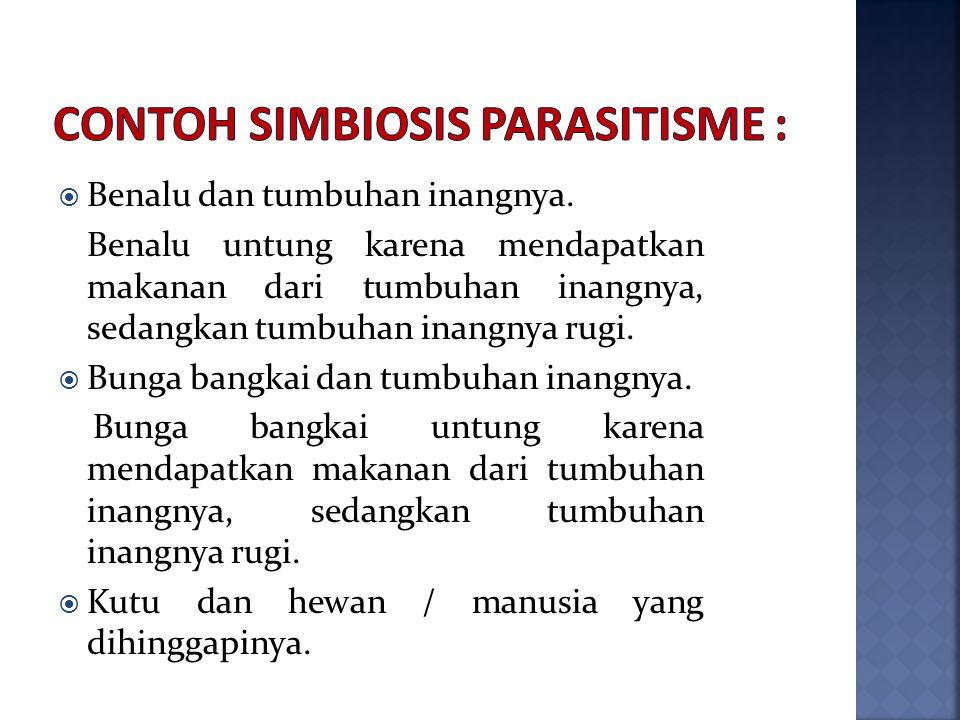 Contoh simbiosis parasitisme :