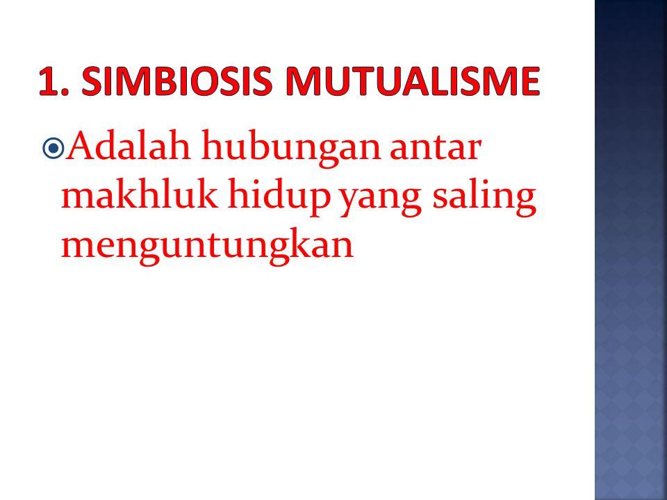 1. Simbiosis Mutualisme Adalah hubungan antar makhluk hidup yang saling menguntungkan