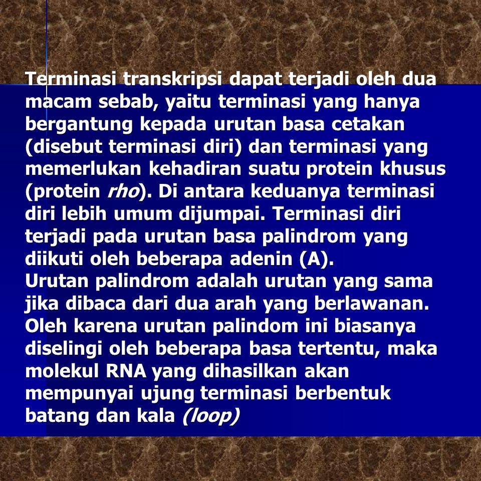 Terminasi transkripsi dapat terjadi oleh dua macam sebab, yaitu terminasi yang hanya bergantung kepada urutan basa cetakan (disebut terminasi diri) dan terminasi yang memerlukan kehadiran suatu protein khusus (protein rho). Di antara keduanya terminasi diri lebih umum dijumpai. Terminasi diri terjadi pada urutan basa palindrom yang diikuti oleh beberapa adenin (A).
