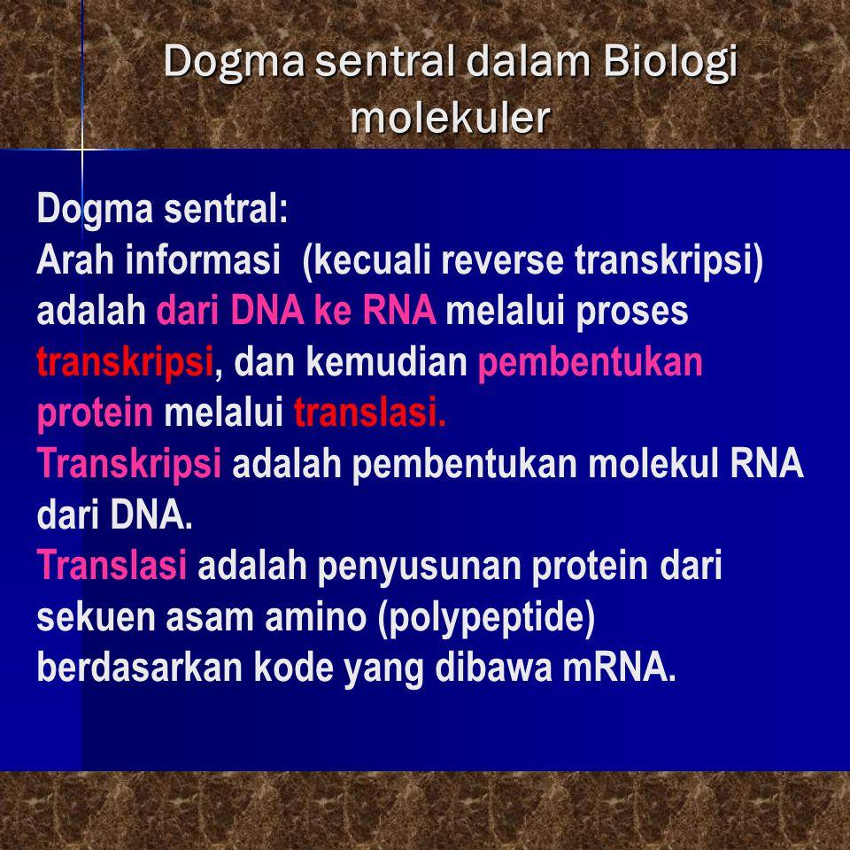 Dogma sentral dalam Biologi molekuler