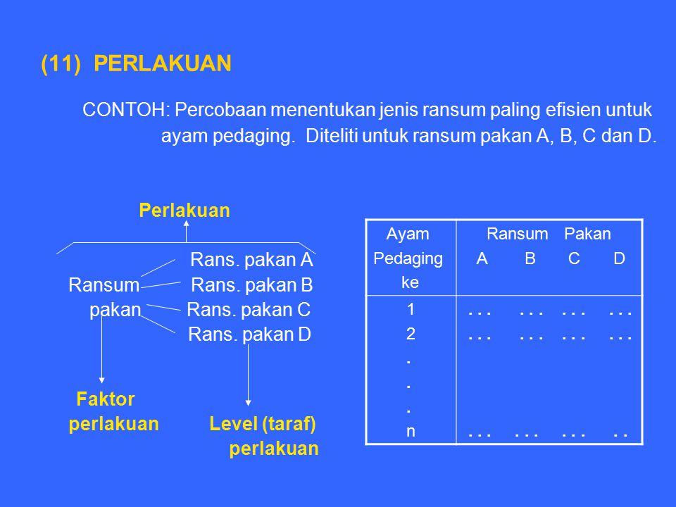 CONTOH: Percobaan menentukan jenis ransum paling efisien untuk