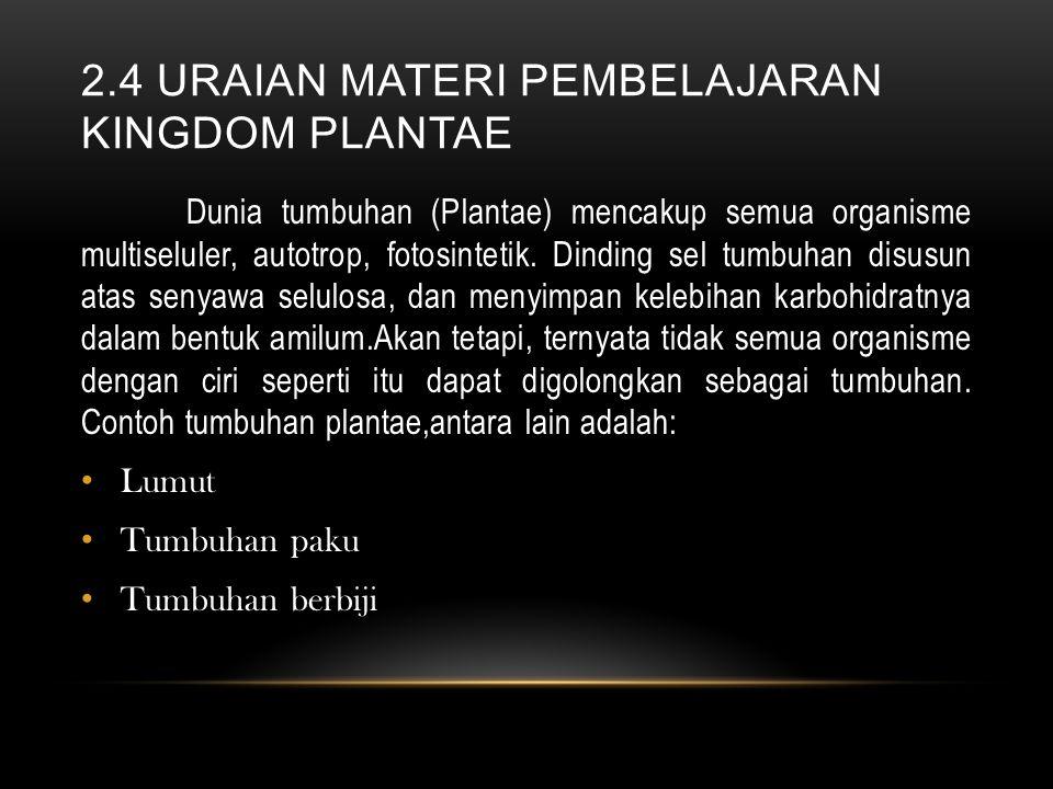 2.4 uraian materi pembelajaran kingdom plantae