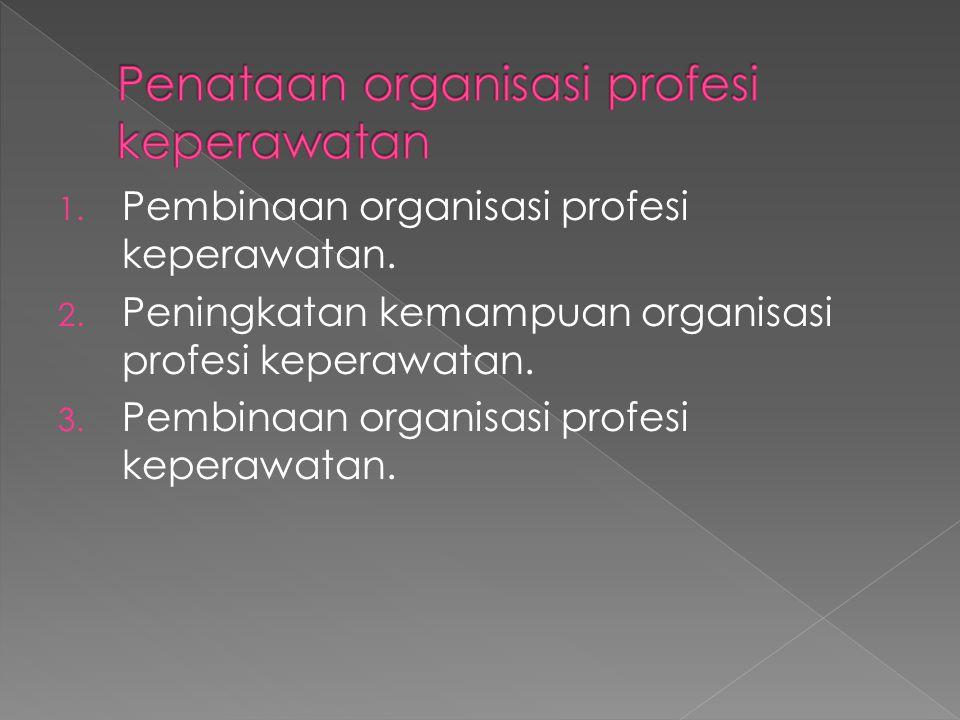 Penataan organisasi profesi keperawatan