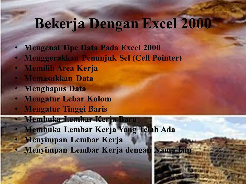 Bekerja Dengan Excel 2000 Mengenal Tipe Data Pada Excel 2000
