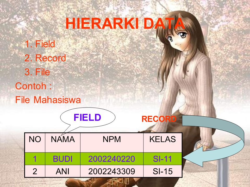 HIERARKI DATA 1. Field 2. Record 3. File Contoh : File Mahasiswa FIELD