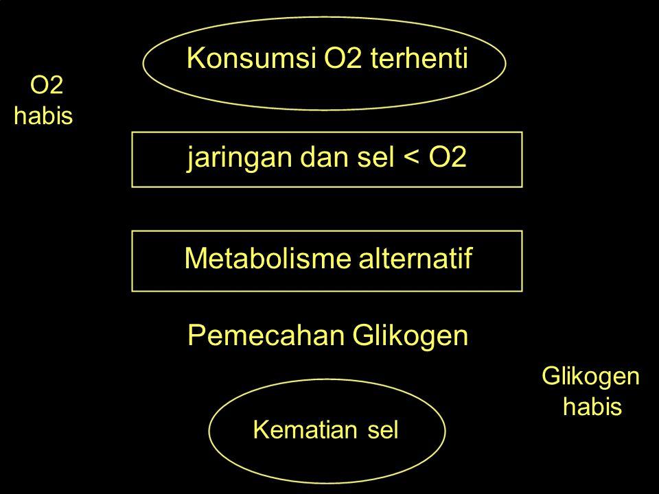 Metabolisme alternatif