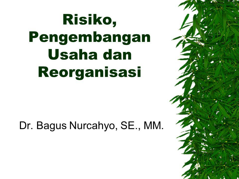 Risiko, Pengembangan Usaha dan Reorganisasi