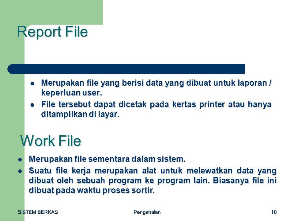 Report File Merupakan file yang berisi data yang dibuat untuk laporan / keperluan user.