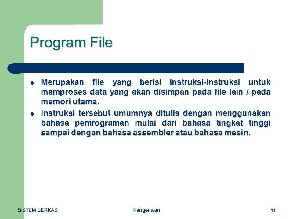 Program File Merupakan file yang berisi instruksi-instruksi untuk memproses data yang akan disimpan pada file lain / pada memori utama.