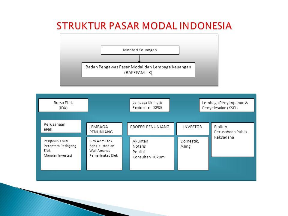 STRUKTUR PASAR MODAL INDONESIA