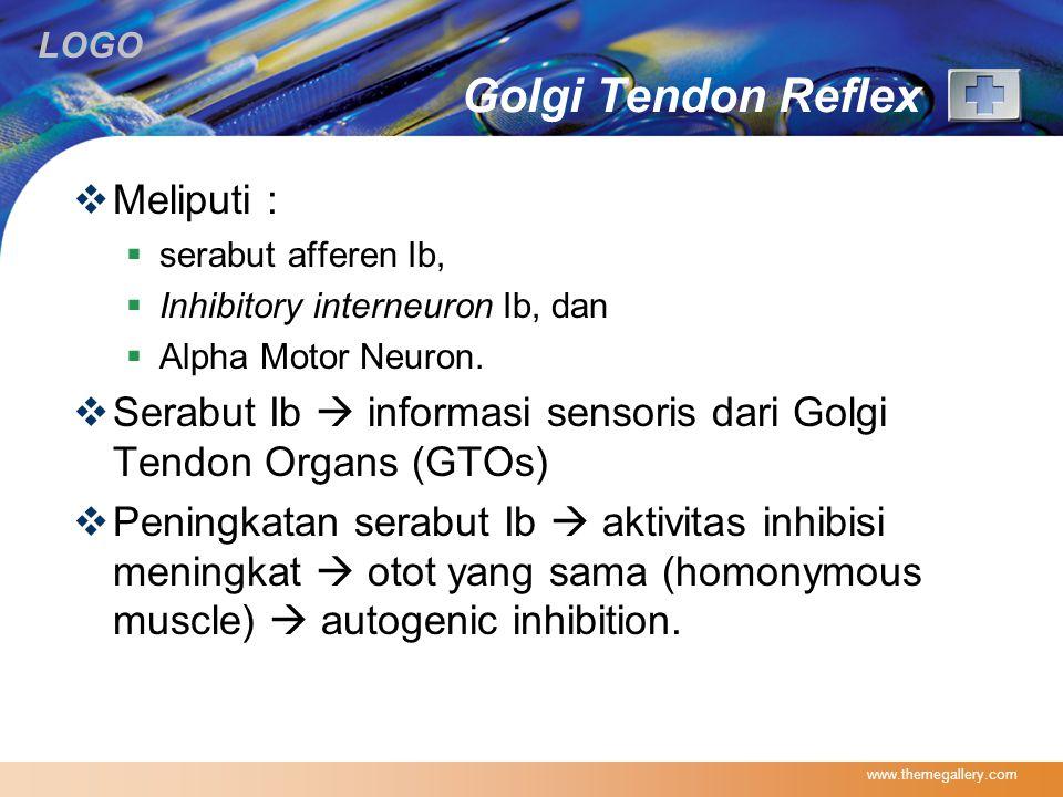 Golgi Tendon Reflex Meliputi :