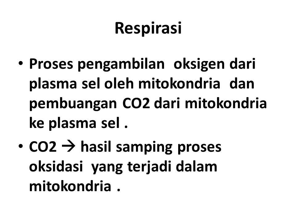 Respirasi Proses pengambilan oksigen dari plasma sel oleh mitokondria dan pembuangan CO2 dari mitokondria ke plasma sel .