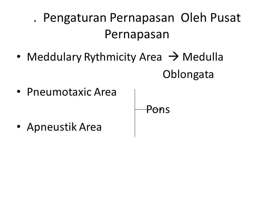 . Pengaturan Pernapasan Oleh Pusat Pernapasan