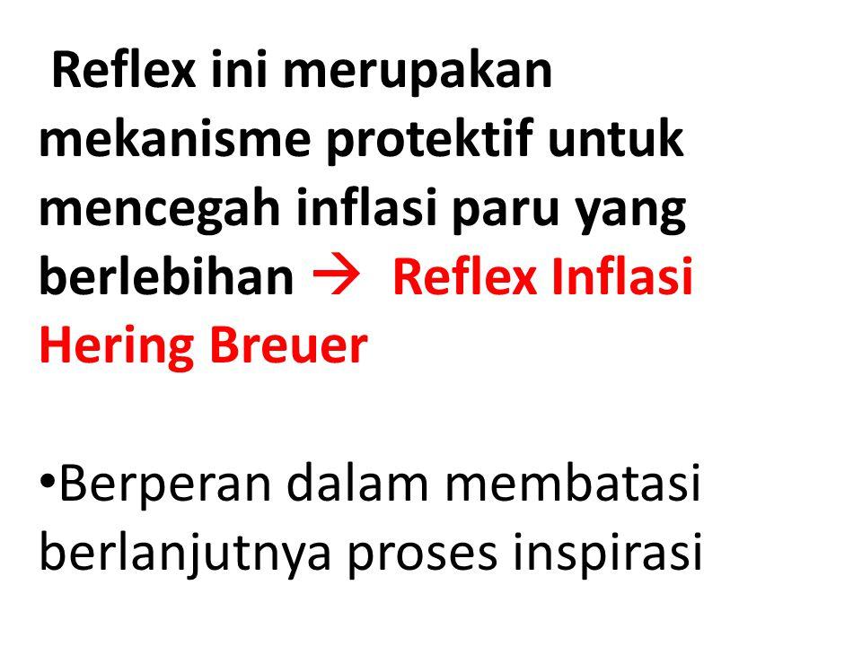 Reflex ini merupakan mekanisme protektif untuk mencegah inflasi paru yang berlebihan  Reflex Inflasi Hering Breuer
