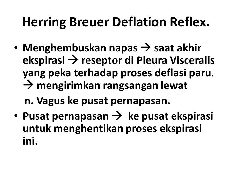 Herring Breuer Deflation Reflex.