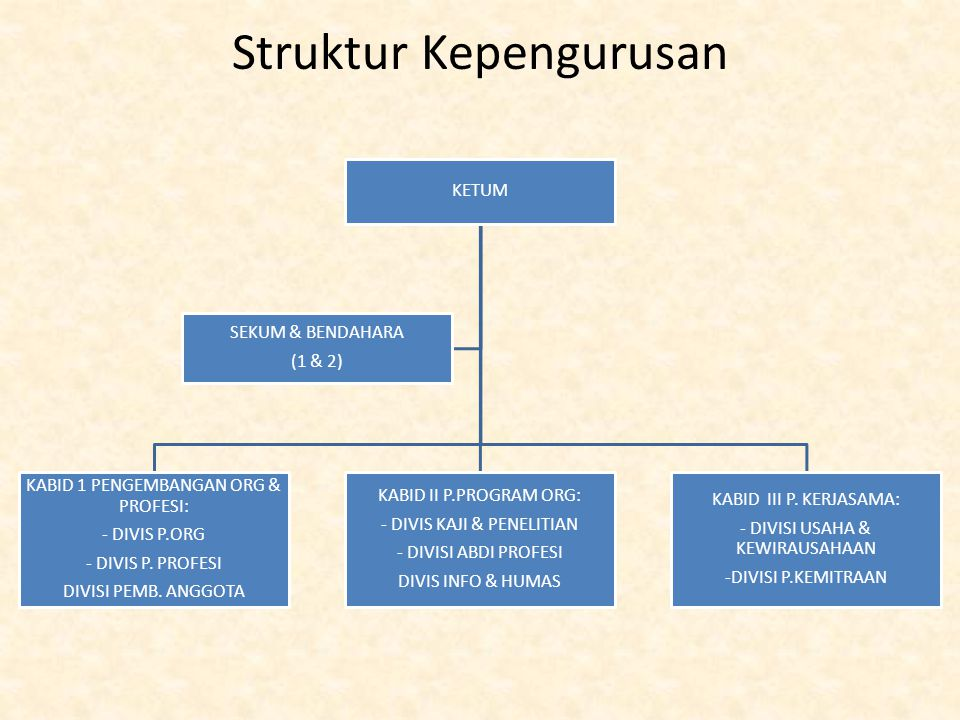 Struktur Kepengurusan