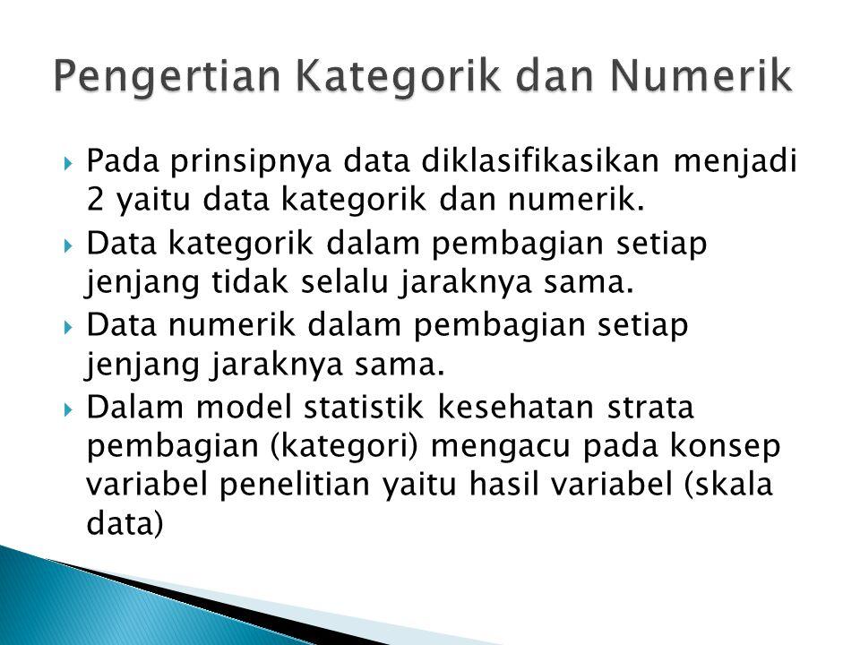 Pengertian Kategorik dan Numerik
