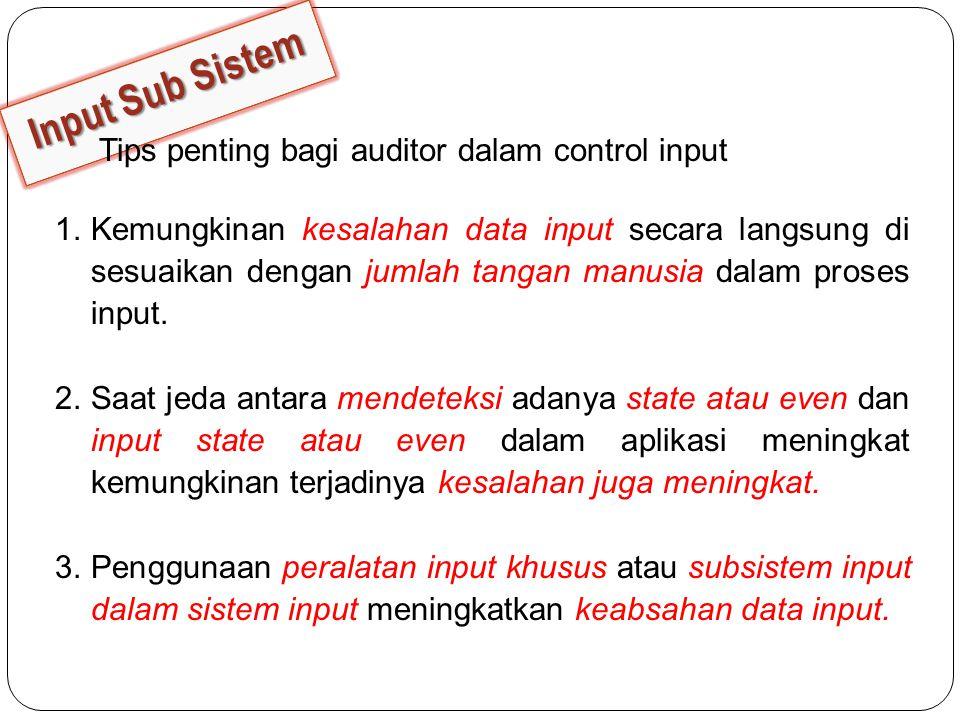 Input Sub Sistem Tips penting bagi auditor dalam control input