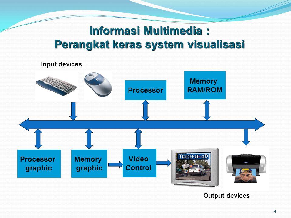 Informasi Multimedia : Perangkat keras system visualisasi