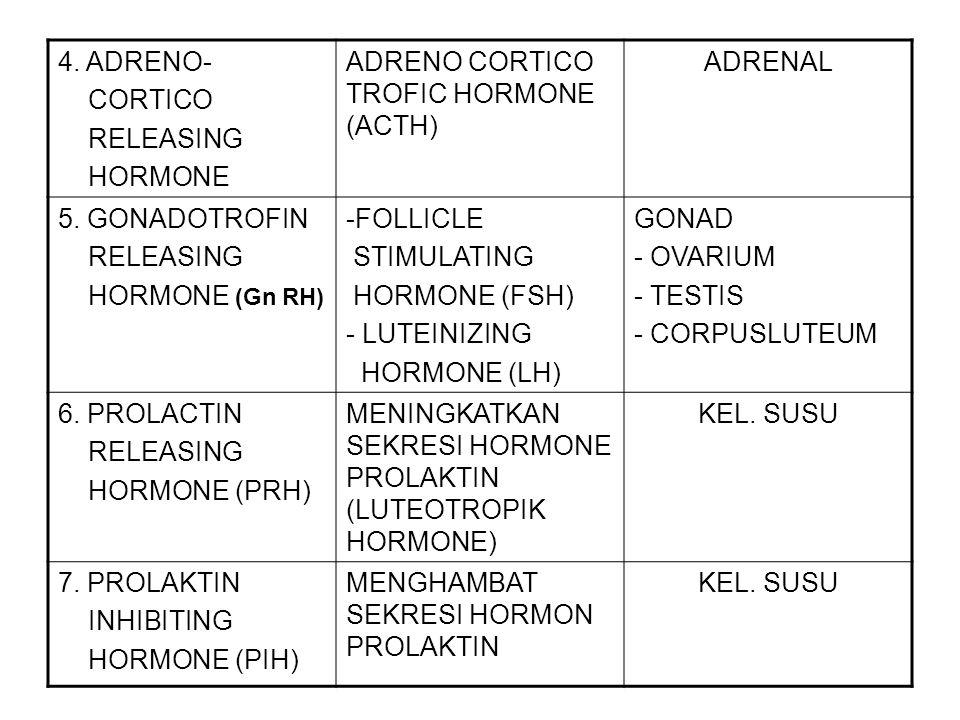 4. ADRENO- CORTICO. RELEASING. HORMONE. ADRENO CORTICO TROFIC HORMONE (ACTH) ADRENAL. 5. GONADOTROFIN.
