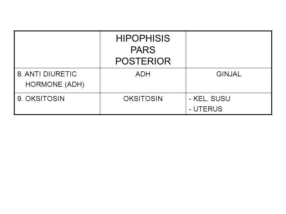HIPOPHISIS PARS POSTERIOR