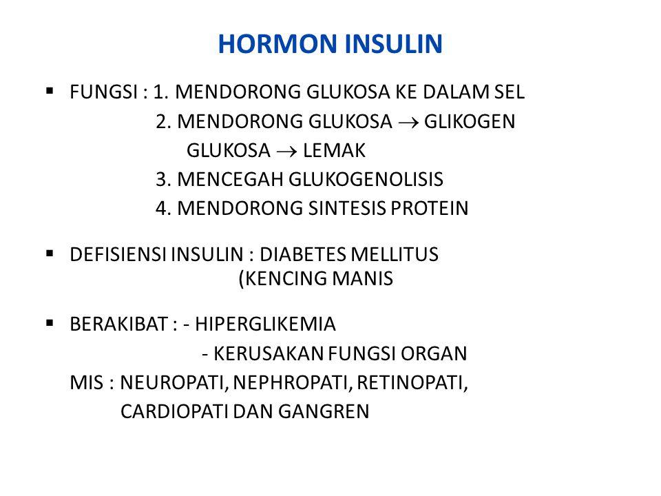 HORMON INSULIN FUNGSI : 1. MENDORONG GLUKOSA KE DALAM SEL