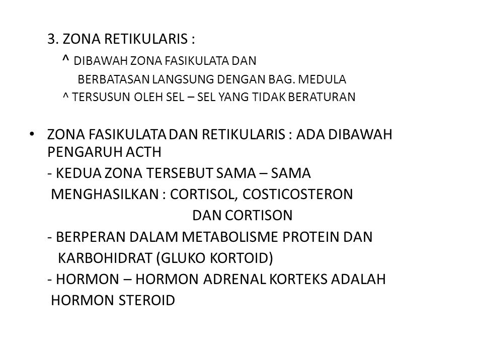 ^ DIBAWAH ZONA FASIKULATA DAN